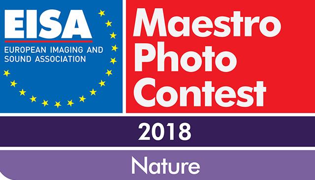 EISA Photo Maestro 2018 03.25