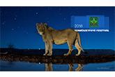 NaturArt - Természetfotó Fesztiválon február 17-én!