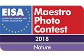 Eisa Maestro fotópályázat 2018