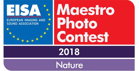 EISA MAESTRO 2018 - 2019 / NATURE - NYERTESEK