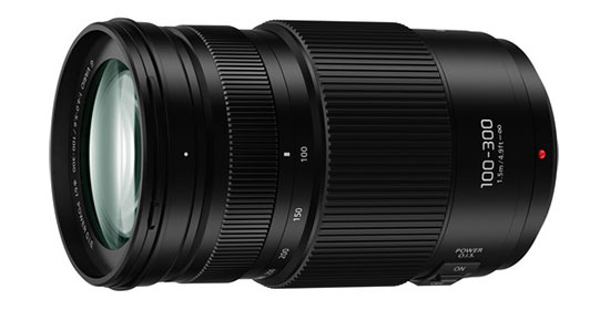 Panasonic Lumix G 100-300mm f/4-5.6 II Power O.I.S.